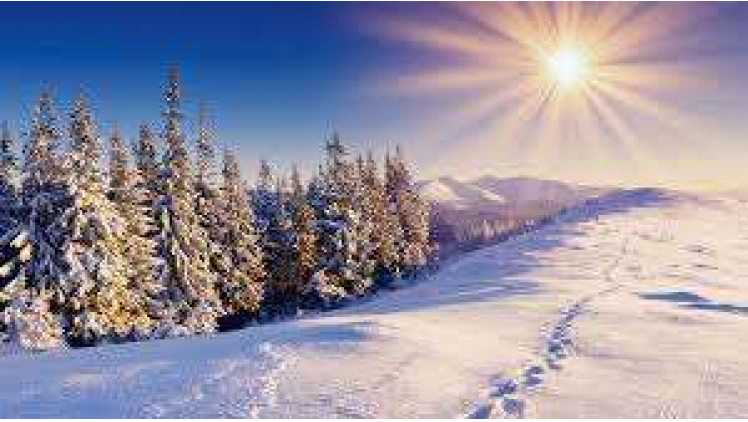 Погода в Ковелі  14 – 20 січня