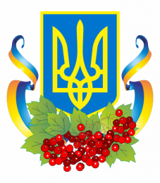 independence_day_of_ukraine-2013